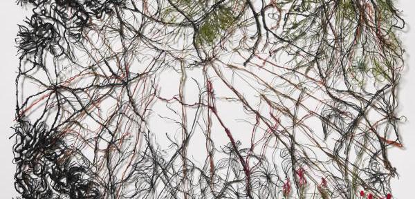 Foresta-Rossa.jpg