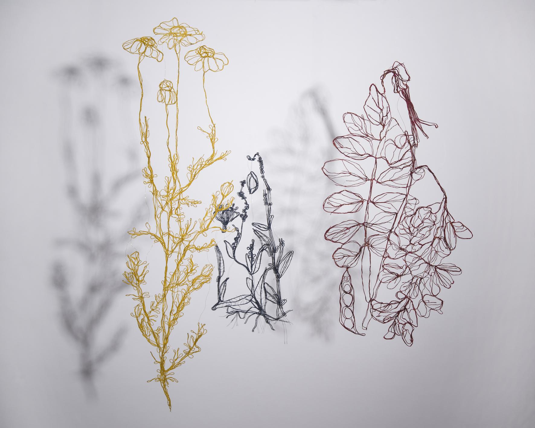 Botanica_022